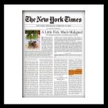 the-newyork1_thumb